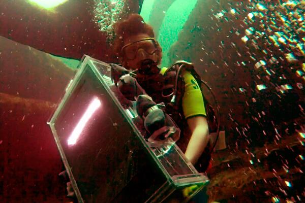 Подводная жизнь сквозь 3d сканер