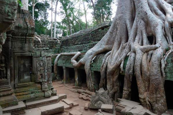 LIDAR помог обнаружить скрытый массив построек в Камбодже