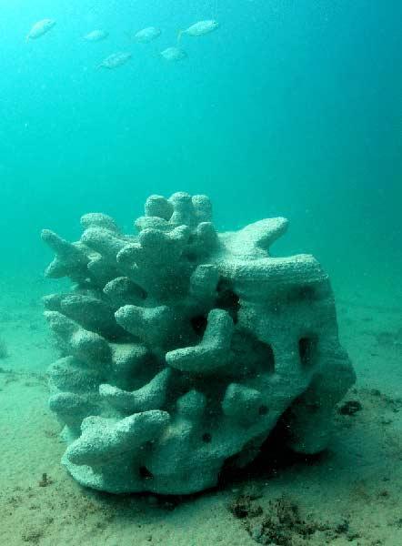 Риф, напечатанный на 3d принтере. Reef Design Lab