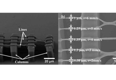 Ученые заинтересовались 3d печатью с использованием соевой смолы