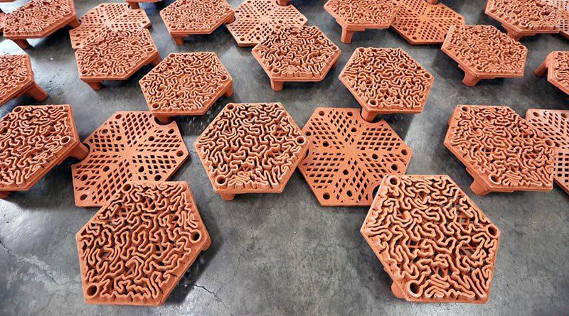 Возрождение биологического разнообразия при помощи коралловых плиток, напечатанных на 3d принтерах